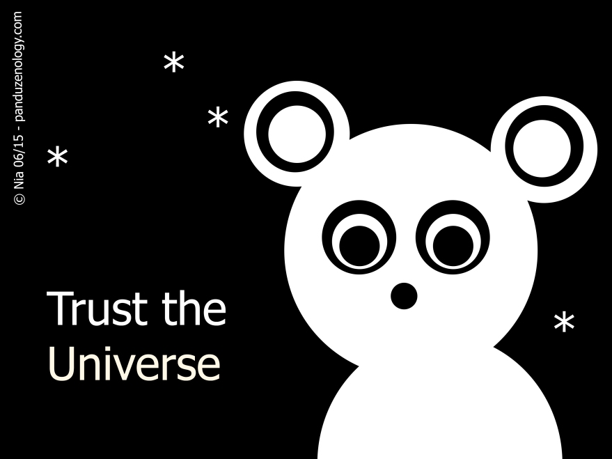 trust the universe_1